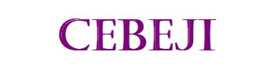 Cebeji - Le web en bref
